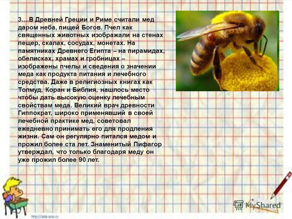3....В Древней Греции и Риме считали мед даром неба, пищей Богов. Пчел как священных животных изображали на стенах пещер, скалах, сосудах, монетах. На памятниках Древнего Египта – на пирамидах, обелисках, храмах и гробницах – изображены пчелы и сведе