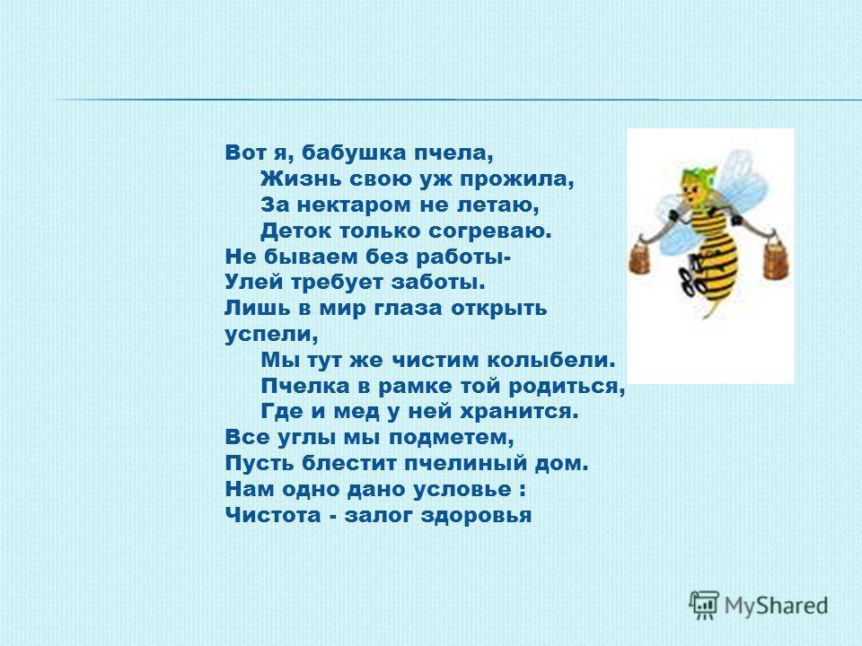 Вот я, бабушка пчела, Жизнь свою уж прожила, За нектаром не летаю, Деток только согреваю. Не бываем без работы- Улей требует заботы. Лишь в мир глаза открыть успели, Мы тут же чистим колыбели. Пчелка в рамке той родиться, Где и мед у ней хранится. Вс