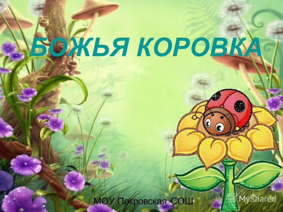 БОЖЬЯ КОРОВКА МОУ Покровская СОШ