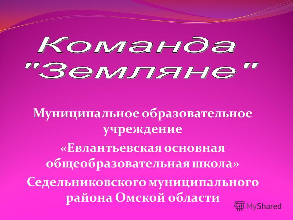 Муниципальное образовательное учреждение «Евлантьевская основная общеобразовательная школа» Седельниковского муниципального района Омской области