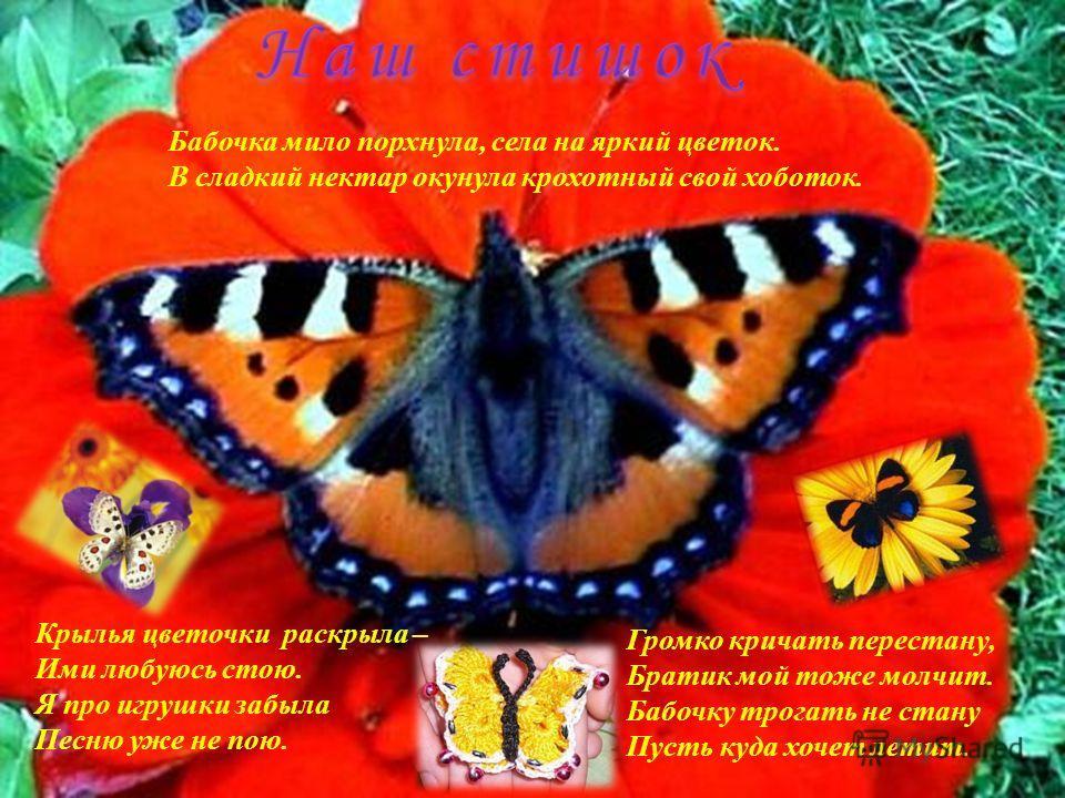 Бабочка мило порхнула, села на яркий цветок. В сладкий нектар окунула крохотный свой хоботок. Крылья цветочки раскрыла – Ими любуюсь стою. Я про игрушки забыла Песню уже не пою. Громко кричать перестану, Братик мой тоже молчит. Бабочку трогать не ста