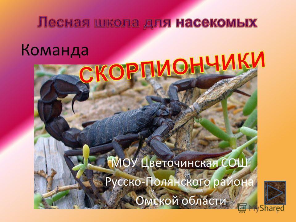 Команда МОУ Цветочинская СОШ Русско-Полянского района Омской области 1
