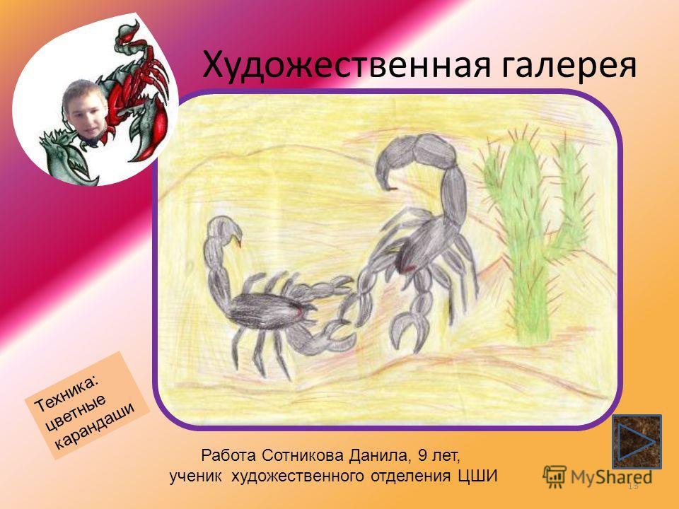 Художественная галерея 13 Работа Сотникова Данила, 9 лет, ученик художественного отделения ЦШИ Техника: цветные карандаши