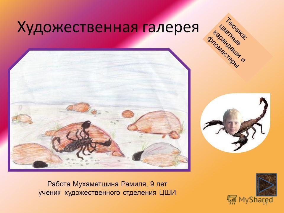 Художественная галерея 14 Работа Мухаметшина Рамиля, 9 лет ученик художественного отделения ЦШИ Техника: цветные карандаши и фломастеры