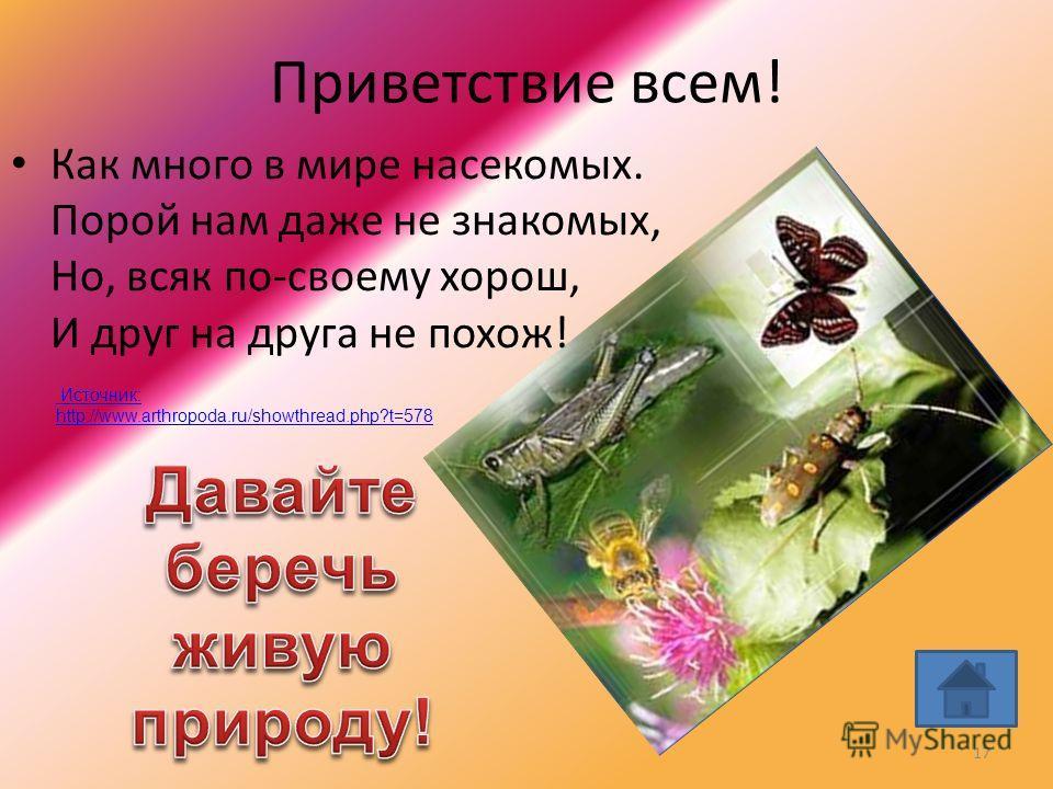 Приветствие всем! Как много в мире насекомых. Порой нам даже не знакомых, Но, всяк по-своему хорош, И друг на друга не похож! 17 Источник: http://www.arthropoda.ru/showthread.php?t=578