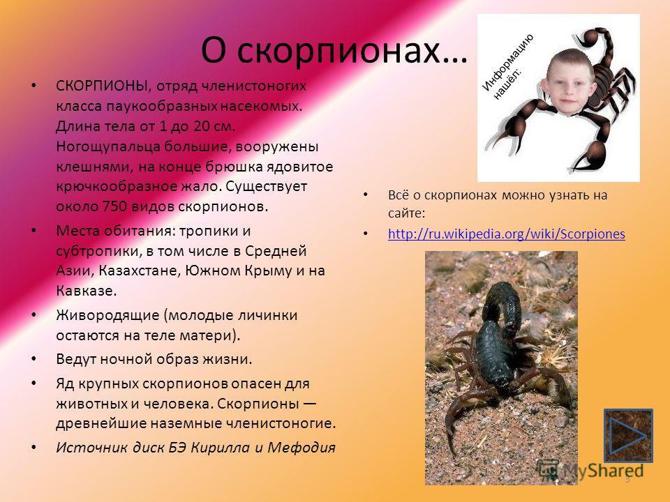 О скорпионах… Всё о скорпионах можно узнать на сайте: http://ru.wikipedia.org/wiki/Scorpiones СКОРПИОНЫ, отряд членистоногих класса паукообразных насекомых. Длина тела от 1 до 20 см. Ногощупальца большие, вооружены клешнями, на конце брюшка ядовитое