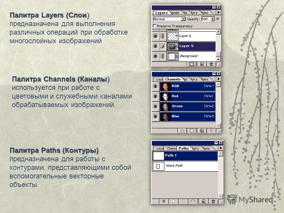 Палитра Layers (Слои) Палитра Layers (Слои) предназначена для выполнения различных операций при обработке многослойных изображений Палитра Paths (Контуры) Палитра Paths (Контуры) предназначена для работы с контурами, представляющими собой вспомогател