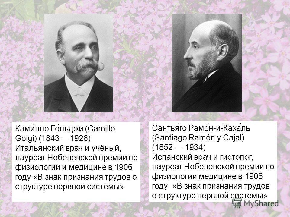 Сантья́го Рамо́н-и-Каха́ль (Santiago Ramón y Cajal) (1852 1934) Испанский врач и гистолог, лауреат Нобелевской премии по физиологии медицине в 1906 году «В знак признания трудов о структуре нервной системы» Ками́лло Го́льджи (Camillo Golgi) (1843 192