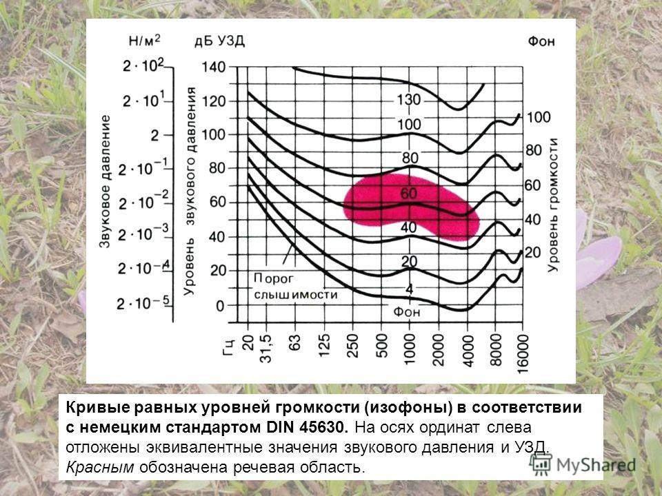 Кривые равных уровней громкости (изофоны) в соответствии с немецким стандартом DIN 45630. На осях ординат слева отложены эквивалентные значения звукового давления и УЗД. Красным обозначена речевая область.