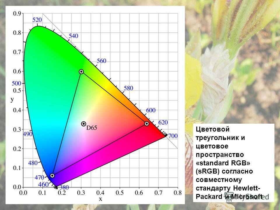 Цветовой треугольник и цветовое пространство «standard RGB» (sRGB) согласно совместному стандарту Hewlett- Packard и Microsoft