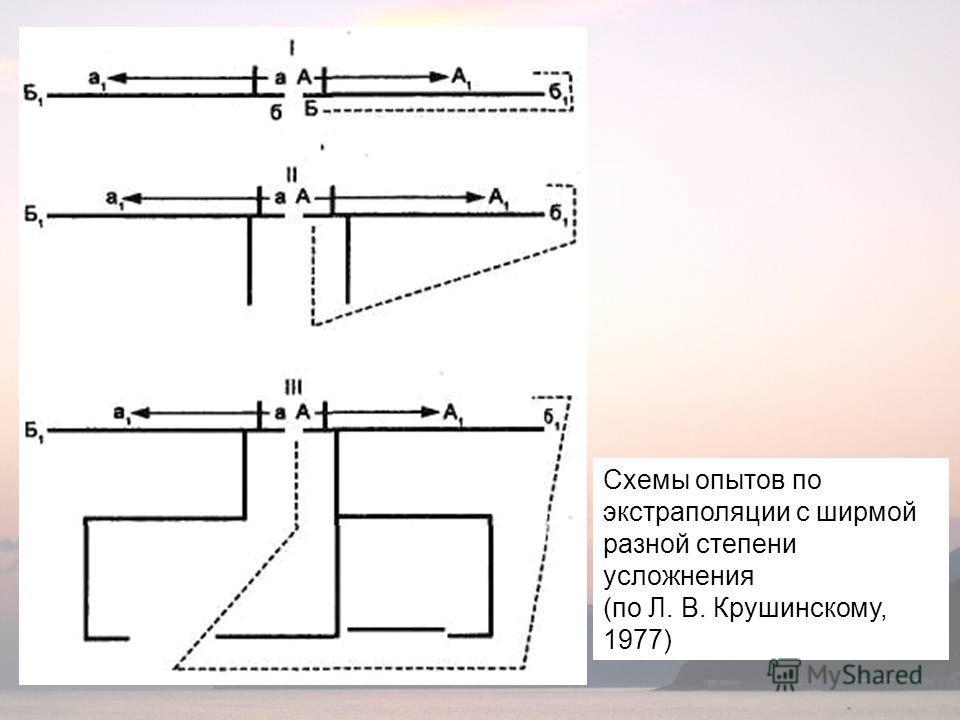 Схемы опытов по экстраполяции с ширмой разной степени усложнения (по Л. В. Крушинскому, 1977)