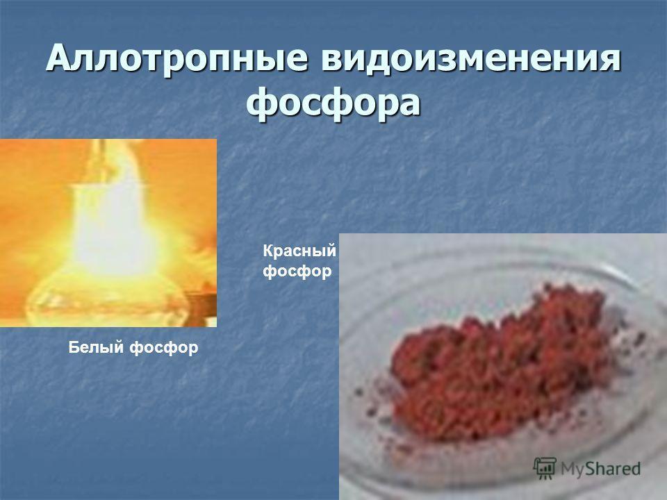 Аллотропные видоизменения фосфора Белый фосфор Красный фосфор