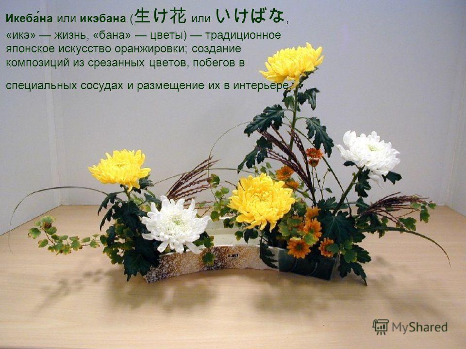 Икеба́на или икэбана ( или, «икэ» жизнь, «бана» цветы) традиционное японское искусство оранжировки; создание композиций из срезанных цветов, побегов в специальных сосудах и размещение их в интерьере.