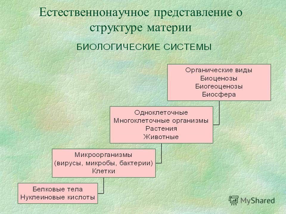 Естественнонаучное представление о структуре материи