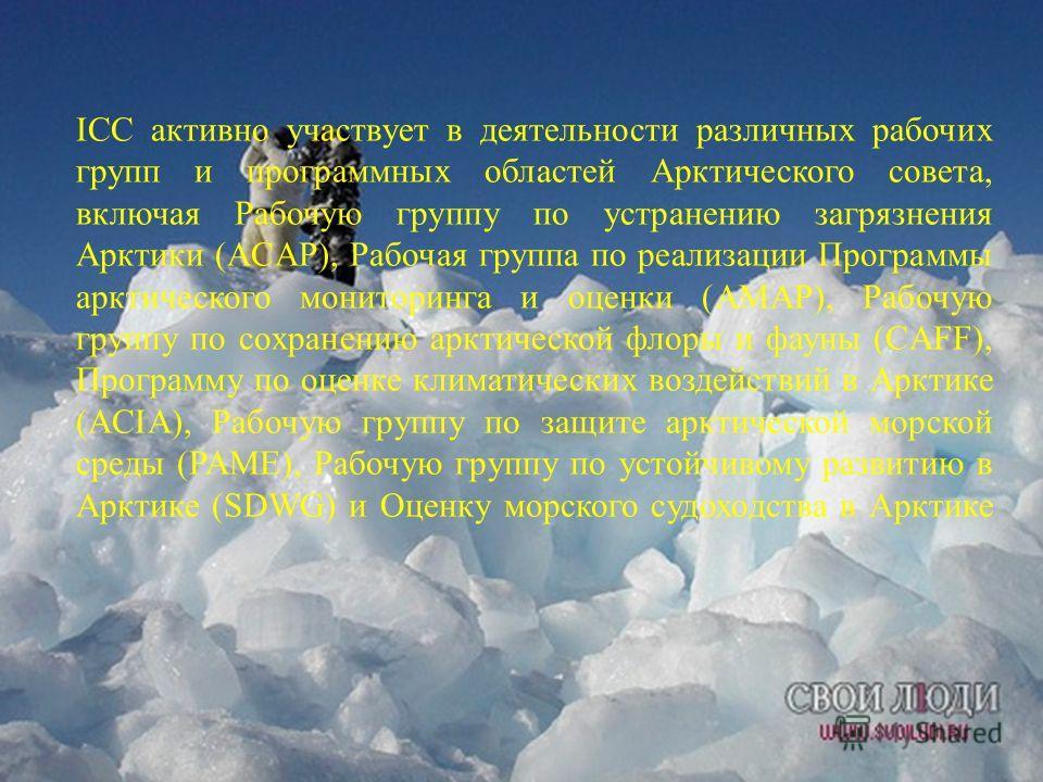 ICC активно участвует в деятельности различных рабочих групп и программных областей Арктического совета, включая Рабочую группу по устранению загрязнения Арктики (ACAP), Рабочая группа по реализации Программы арктического мониторинга и оценки (AMAP),