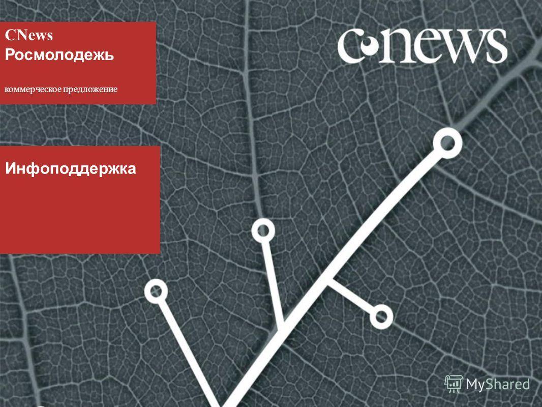 CNews Росмолодежь коммерческое предложение Инфоподдержка
