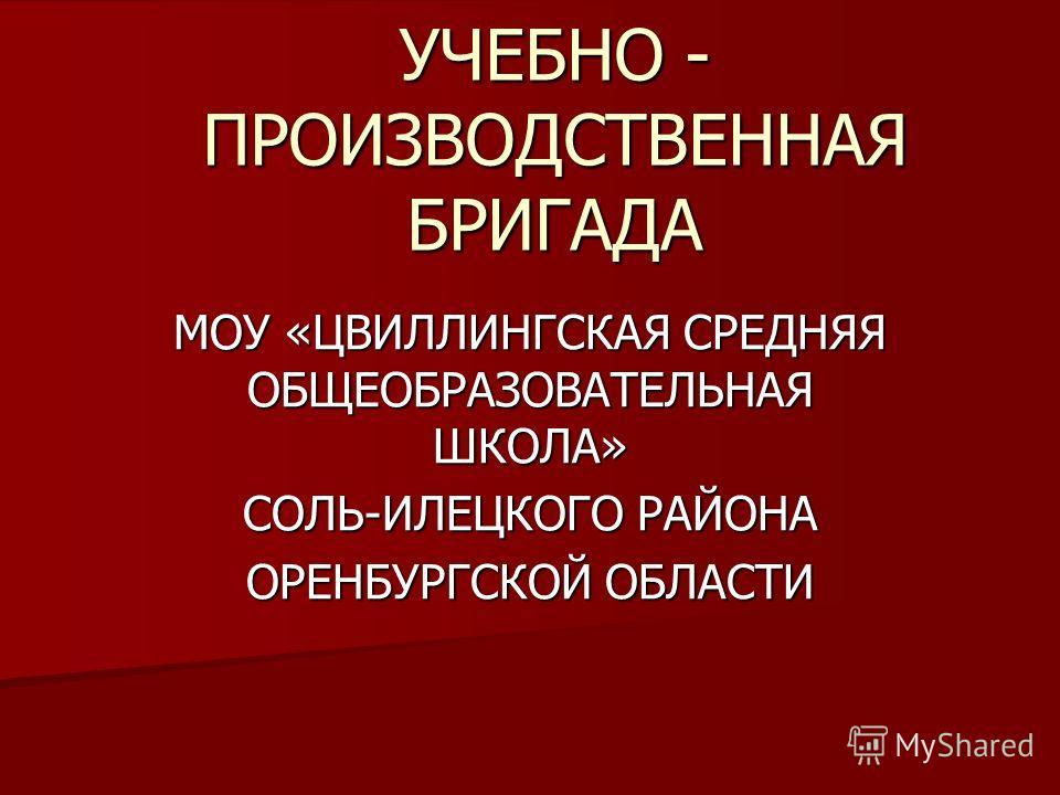 УЧЕБНО - ПРОИЗВОДСТВЕННАЯ БРИГАДА МОУ «ЦВИЛЛИНГСКАЯ СРЕДНЯЯ ОБЩЕОБРАЗОВАТЕЛЬНАЯ ШКОЛА» СОЛЬ-ИЛЕЦКОГО РАЙОНА ОРЕНБУРГСКОЙ ОБЛАСТИ