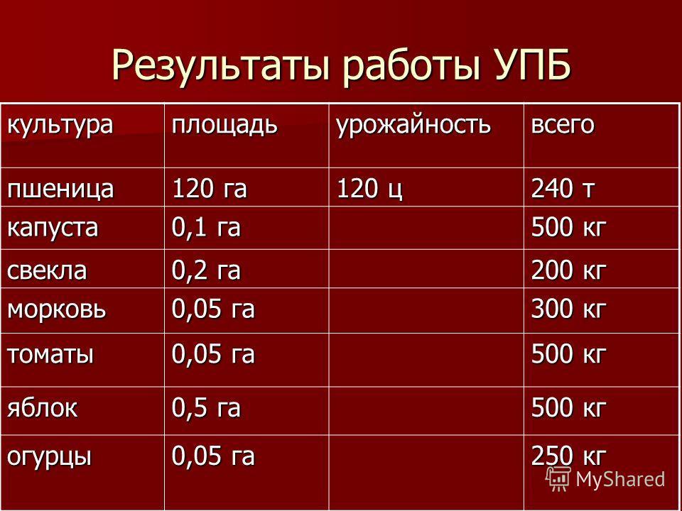 Результаты работы УПБ культураплощадьурожайностьвсего пшеница 120 га 120 ц 240 т капуста 0,1 га 500 кг свекла 0,2 га 200 кг морковь 0,05 га 300 кг томаты 0,05 га 500 кг яблок 0,5 га 500 кг огурцы 0,05 га 250 кг