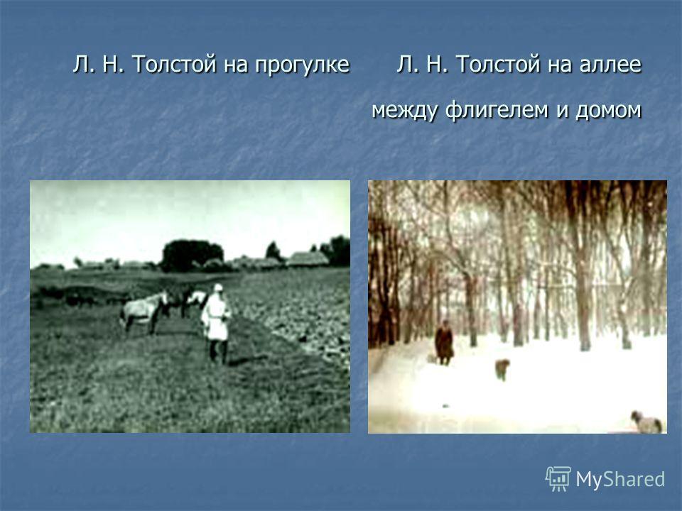 Л. Н. Толстой на прогулке Л. Н. Толстой на аллее между флигелем и домом