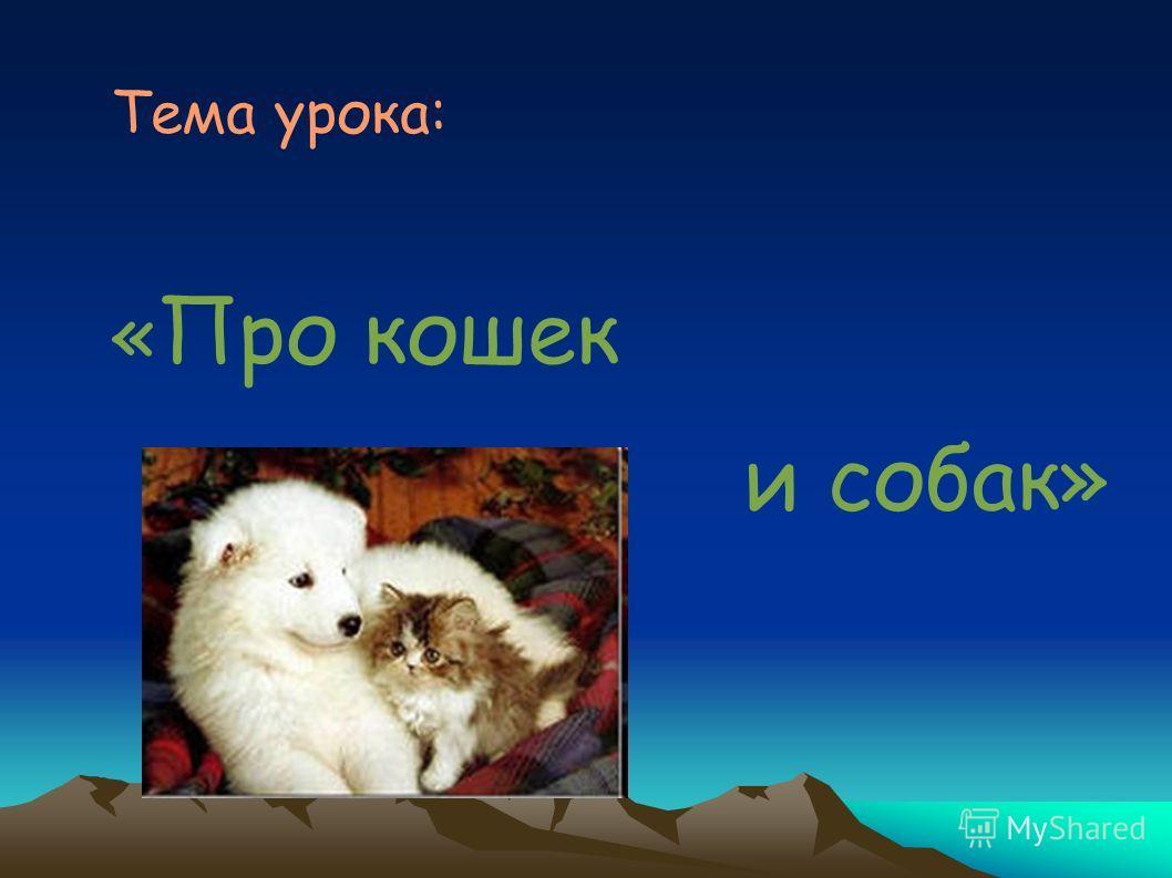 Тема урока: « Про кошек и собак»
