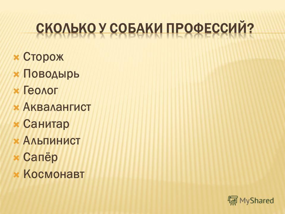 Сторож Поводырь Геолог Аквалангист Санитар Альпинист Сапёр Космонавт