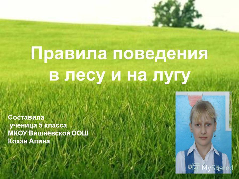 Правила поведения в лесу и на лугу Составила ученица 5 класса МКОУ Вишнёвской ООШ Кохан Алина