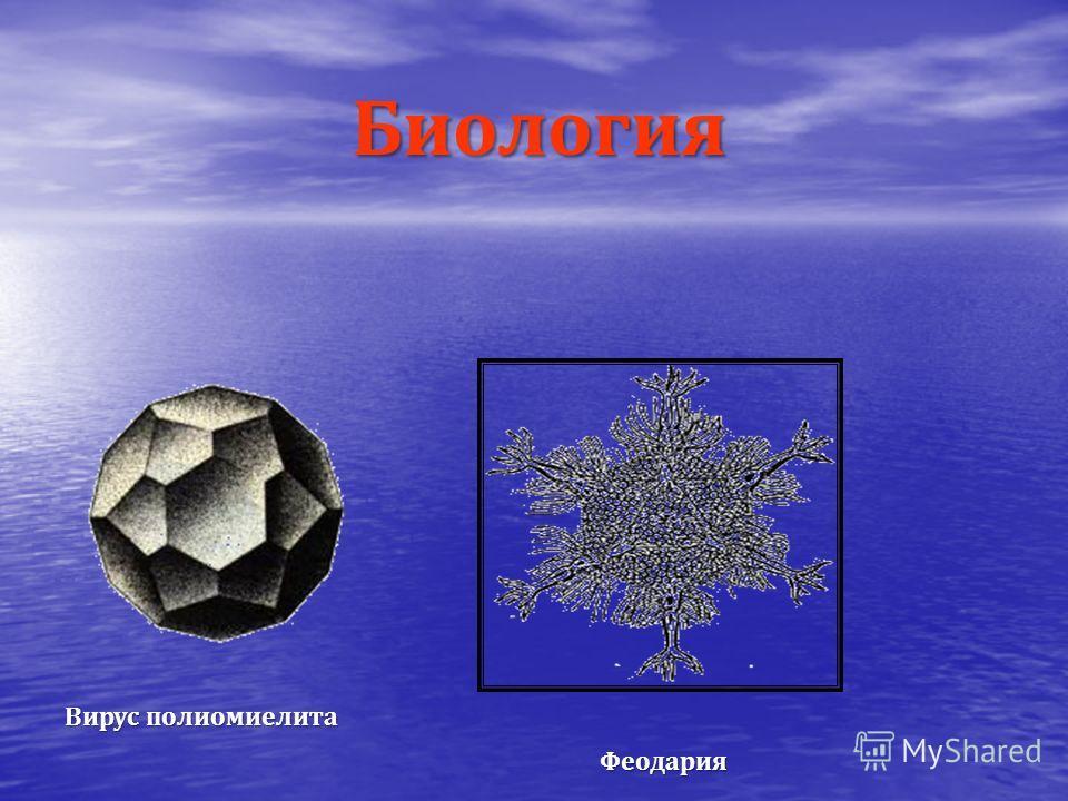ХИМИЯ Кристаллы поваренной соли Строение молекулы метана Строение решётки алмаза Пирит