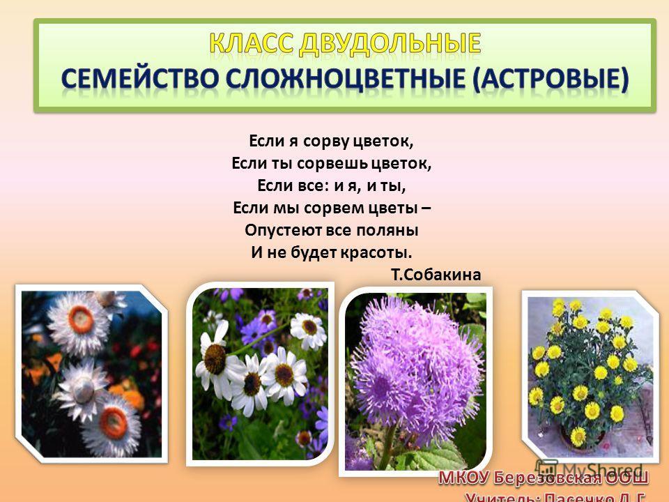 Если я сорву цветок, Если ты сорвешь цветок, Если все: и я, и ты, Если мы сорвем цветы – Опустеют все поляны И не будет красоты. Т.Собакина