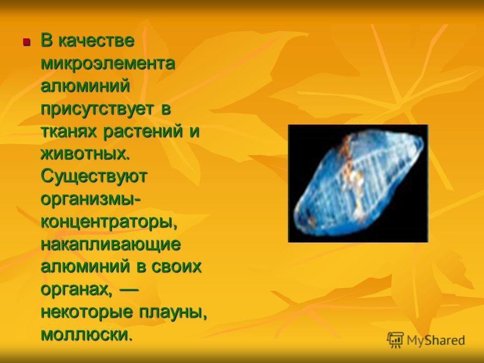 В качестве микроэлемента алюминий присутствует в тканях растений и животных. Существуют организмы- концентраторы, накапливающие алюминий в своих органах, некоторые плауны, моллюски. В качестве микроэлемента алюминий присутствует в тканях растений и ж