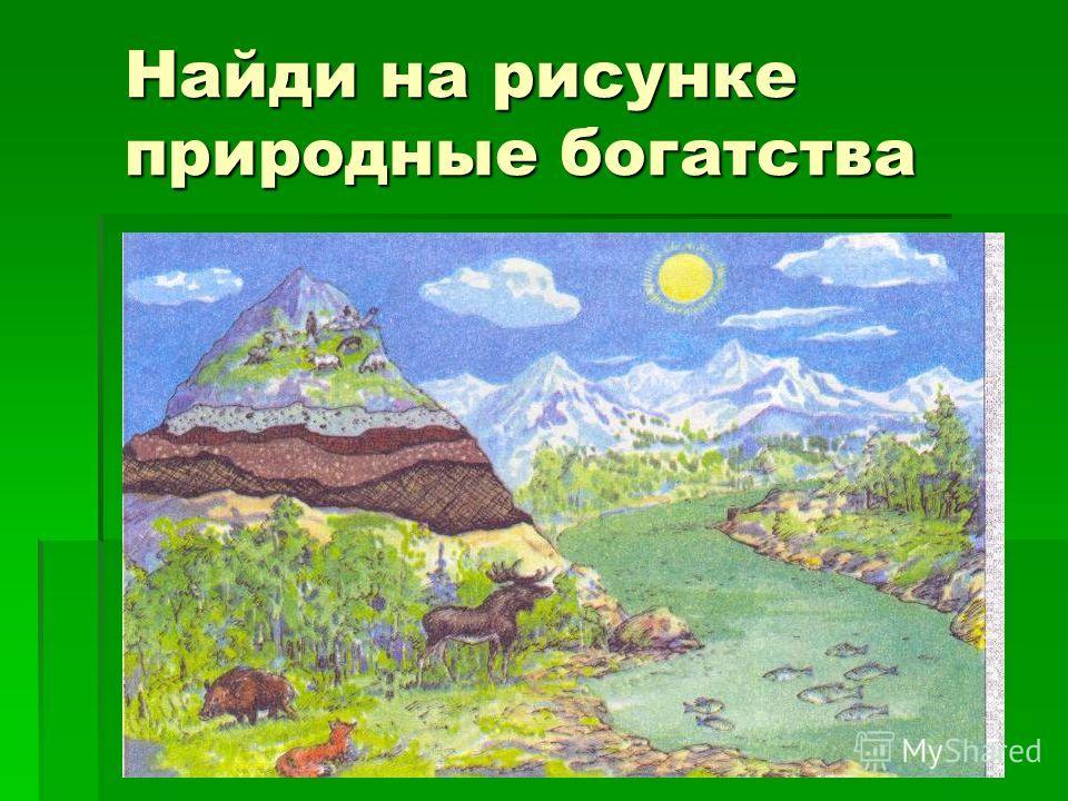 Найди на рисунке природные богатства