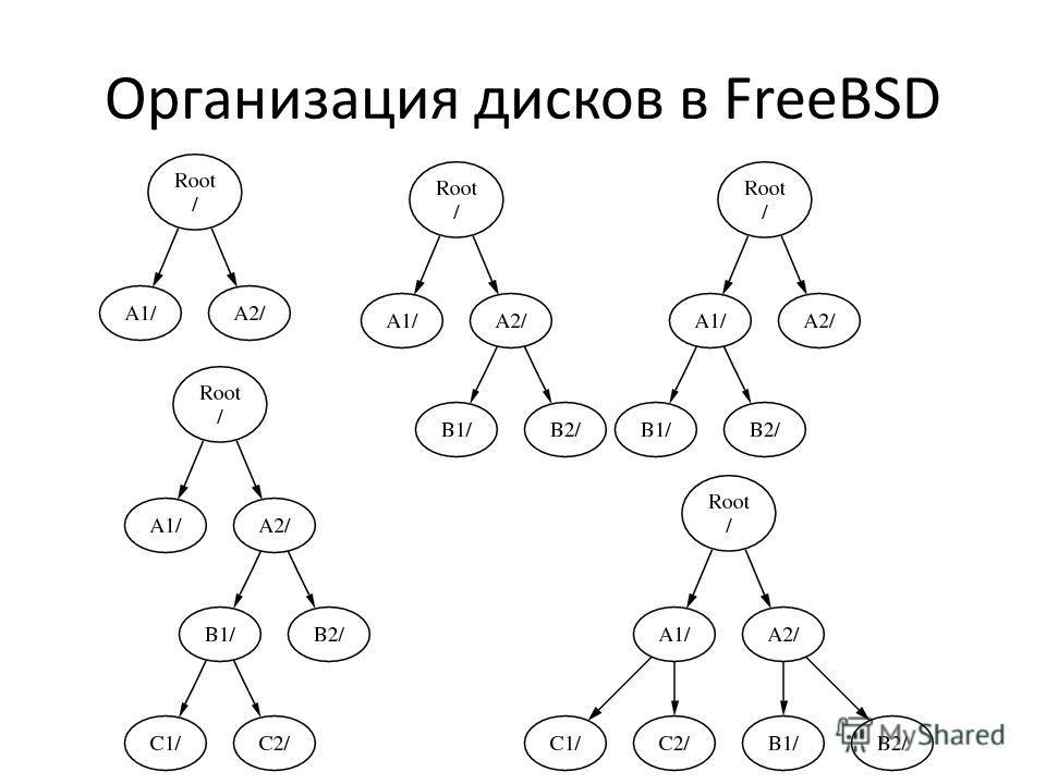 Организация дисков в FreeBSD