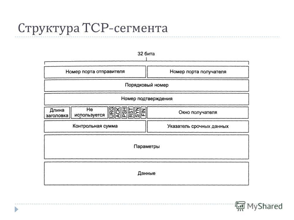 Структура TCP- сегмента