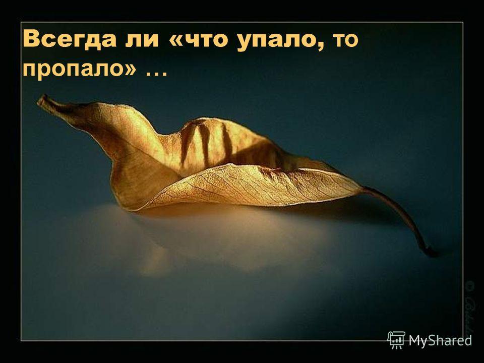 Всегда ли «что упало, то пропало» …