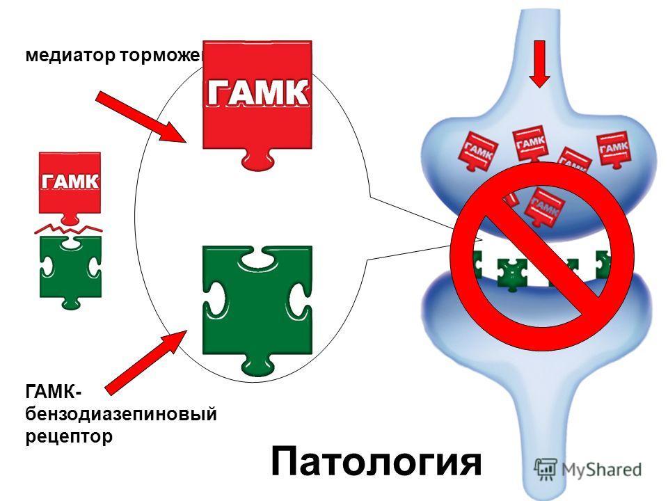 ГАМК- бензодиазепиновый рецептор медиатор торможения Патология