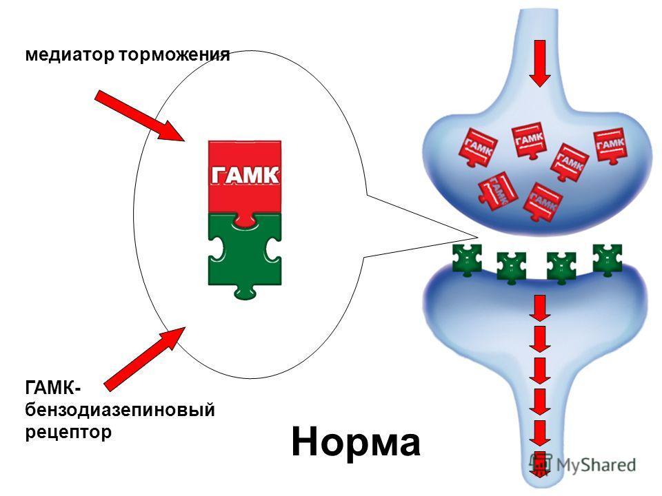 ГАМК- бензодиазепиновый рецептор медиатор торможения Норма