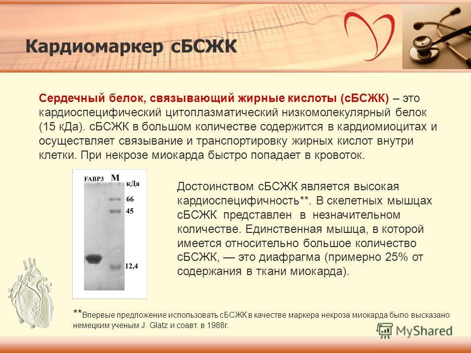 Кардиомаркер сБСЖК Сердечный белок, связывающий жирные кислоты (сБСЖК) – это кардиоспецифический цитоплазматический низкомолекулярный белок (15 кДа). сБСЖК в большом количестве содержится в кардиомиоцитах и осуществляет связывание и транспортировку ж
