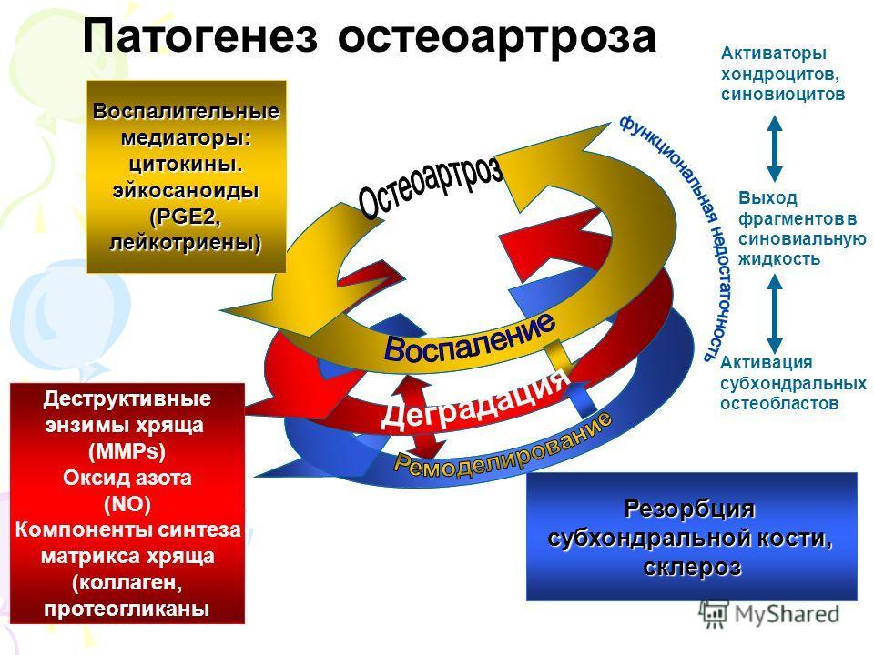 Активаторы хондроцитов, синовиоцитов Выход фрагментов в синовиальную жидкость Активация субхондральных остеобластов Резорбция субхондральной кости, склероз Воспалительныемедиаторы:цитокины.эйкосаноиды (PGE2, лейкотриены) Деструктивные энзимы хряща (M