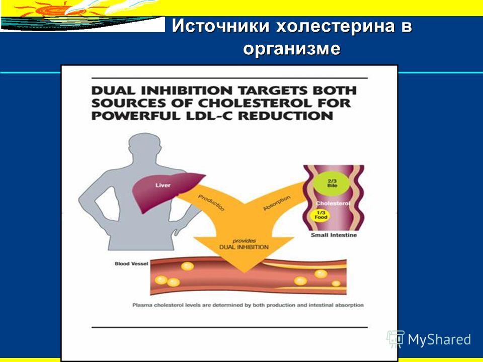 5 Эзетрол подавляет всасывание холестерина Bile Food Intake Liver Статин подавляет выработку холестерина Кровяной сосуд Снижение холестерина, поступающего из двух источников 1,2 Источники холестерина в организме ВсасываниеВыработка