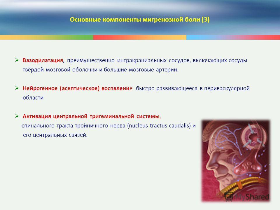 8 Основные компоненты мигренозной боли (3) Вазодилатация, преимущественно интракраниальных сосудов, включающих сосуды твёрдой мозговой оболочки и большие мозговые артерии. Нейрогенное (асептическое) воспаление быстро развивающееся в периваскулярной о