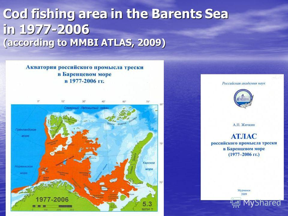 Cod fishing area in the Barents Sea in 1977-2006 (according to MMBI ATLAS, 2009)