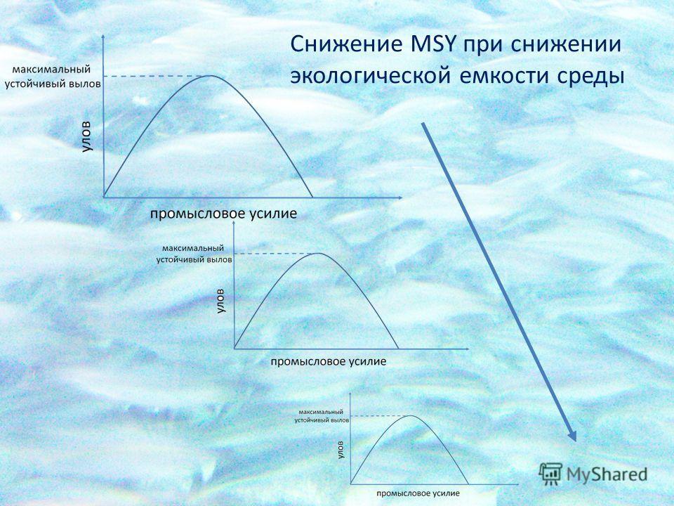 Снижение MSY при снижении экологической емкости среды