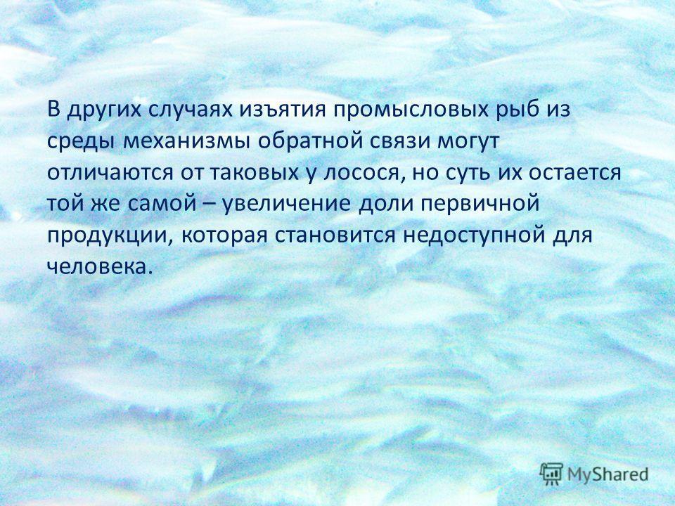 В других случаях изъятия промысловых рыб из среды механизмы обратной связи могут отличаются от таковых у лосося, но суть их остается той же самой – увеличение доли первичной продукции, которая становится недоступной для человека.