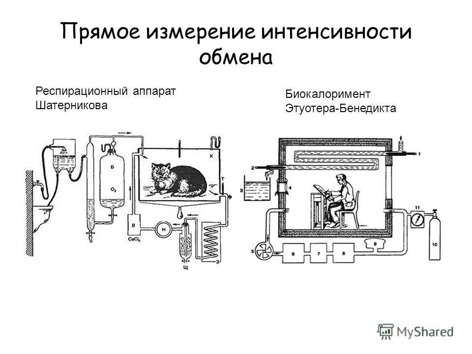 Прямое измерение интенсивности обмена Респирационный аппарат Шатерникова Биокалоримент Этуотера-Бенедикта