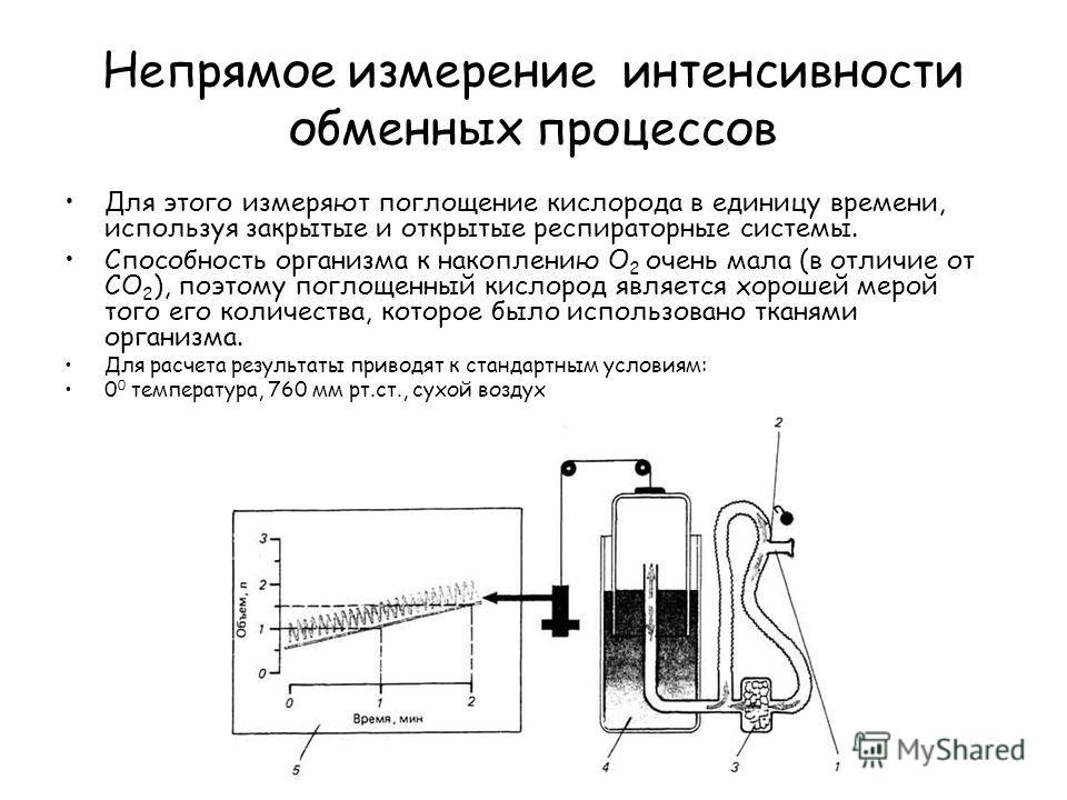 Непрямое измерение интенсивности обменных процессов Для этого измеряют поглощение кислорода в единицу времени, используя закрытые и открытые респираторные системы. Способность организма к накоплению О 2 очень мала (в отличие от СО 2 ), поэтому поглощ