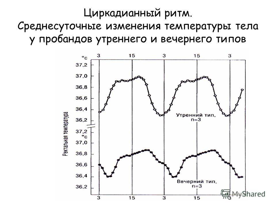 Циркадианный ритм. Среднесуточные изменения температуры тела у пробандов утреннего и вечернего типов