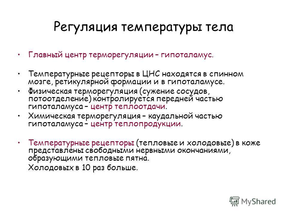 Регуляция температуры тела Главный центр терморегуляции – гипоталамус. Температурные рецепторы в ЦНС находятся в спинном мозге, ретикулярной формации и в гипоталамусе. Физическая терморегуляция (сужение сосудов, потоотделение) контролируется передней