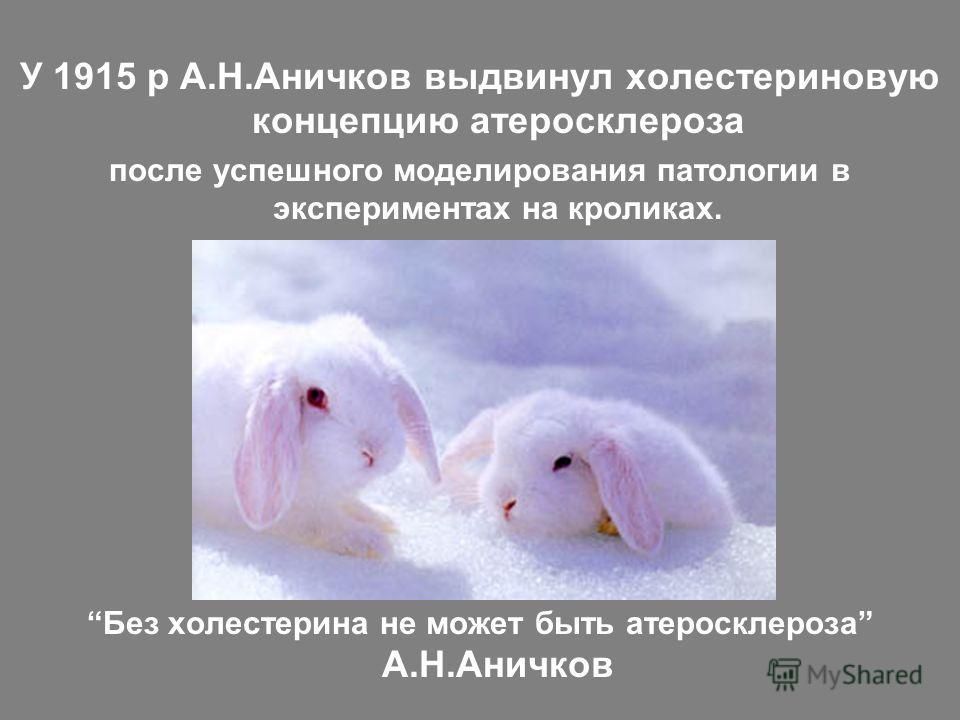 У 1915 р А.Н.Аничков выдвинул холестериновую концепцию атеросклероза после успешного моделирования патологии в экспериментах на кроликах. Без холестерина не может быть атеросклероза А.Н.Аничков