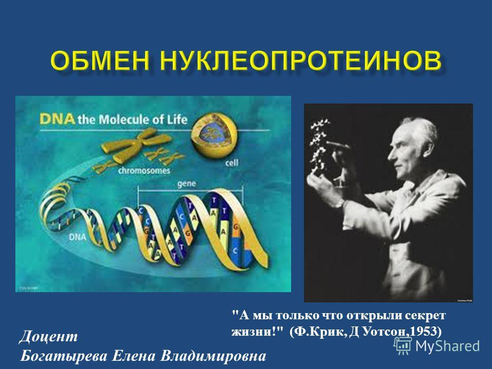А мы только что открыли секрет жизни ! ( Ф. Крик, Д Уотсон,1953) Доцент Богатырева Елена Владимировна
