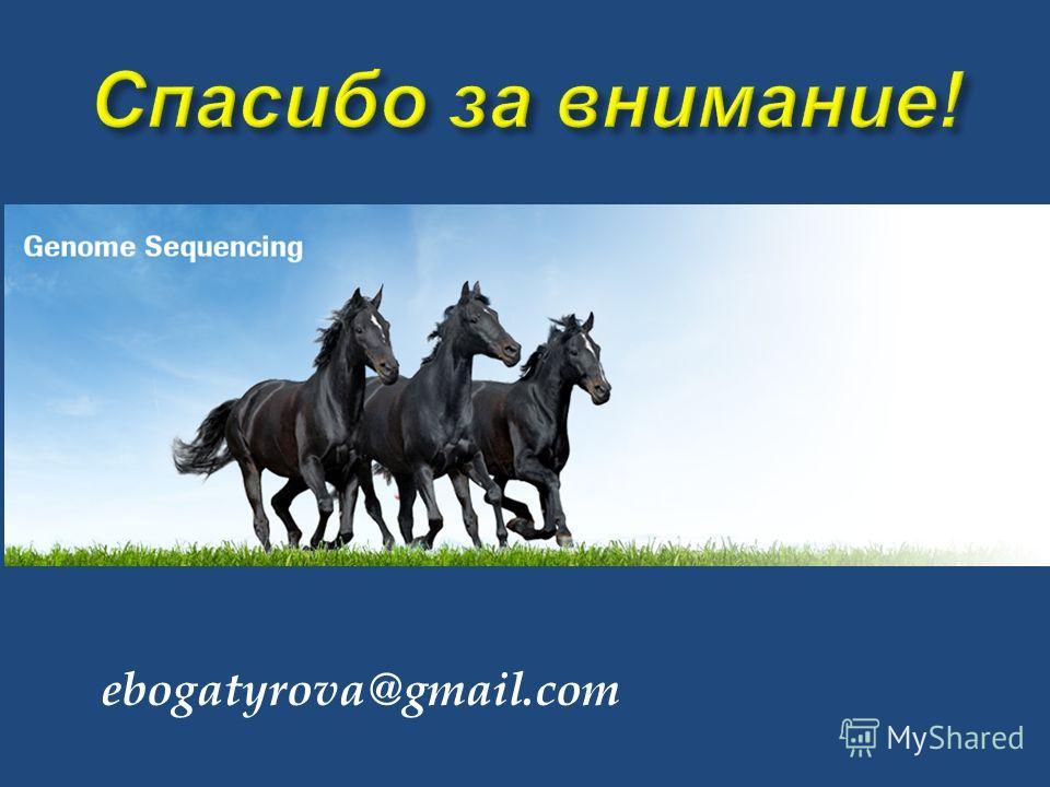 ebogatyrova@gmail.com