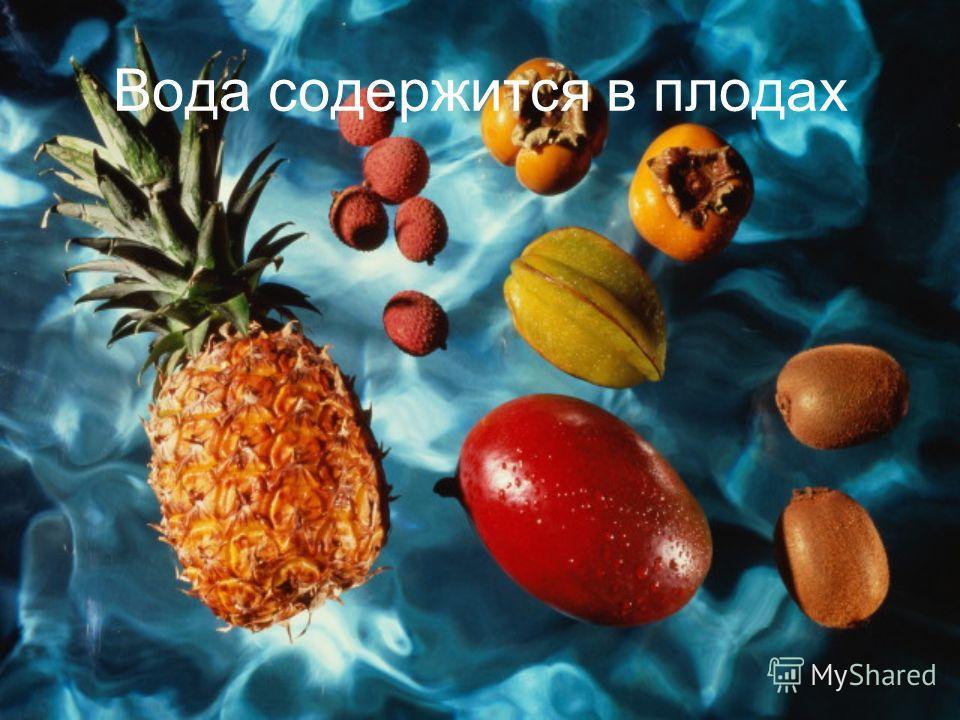 Вода содержится в плодах